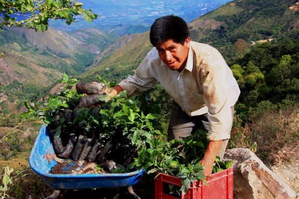 Peru__Farmer_Cajamarca_